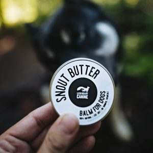 legendary canine 100% natural snout butter for dogs in hand with huskey in background